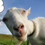 Tethering Goat in the Energy Market